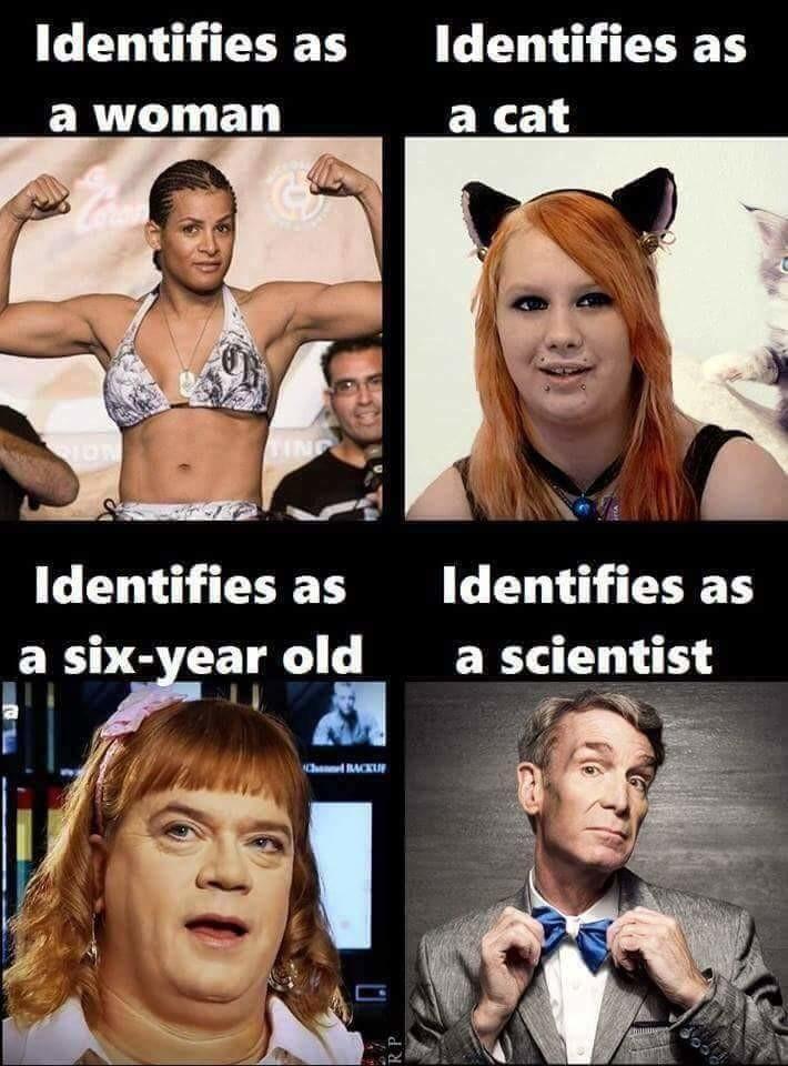 Identify yourself. . Identifies as Identifies as a cat Identifies as Identifies as a six- ear old a scientist. I identify as a loyalist politics