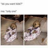 mine will be a corgi