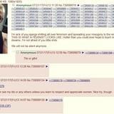 Feminist tries 4chan