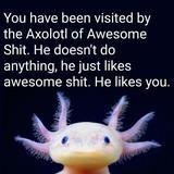 Stay Awesome FJ!