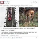 Facebook has a sense of humour..