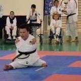 armless karate