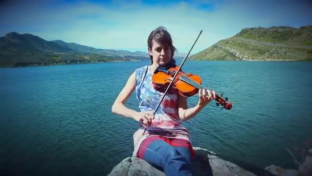 fiddle. .