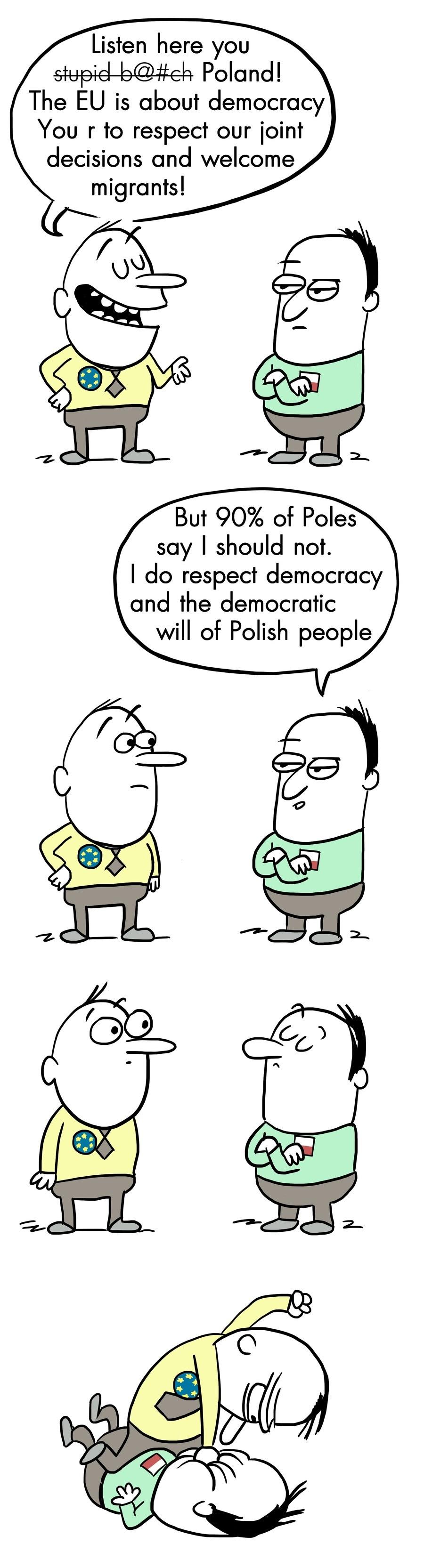 European democracy in action. . eu poland europe democracy