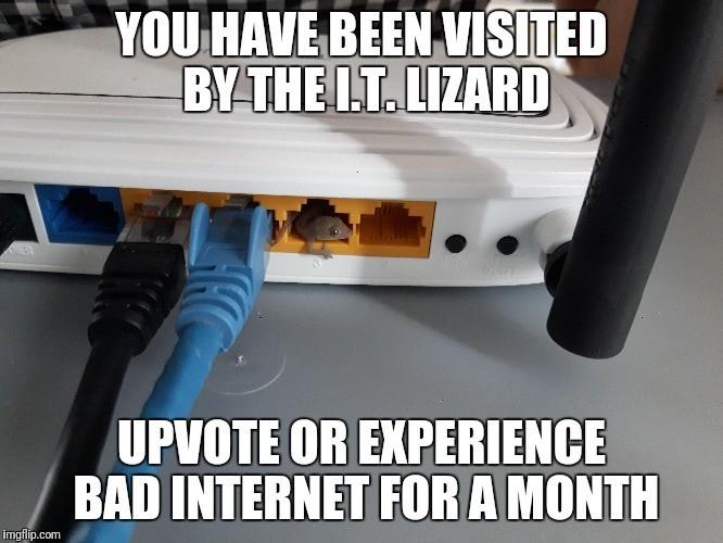 IT Wizard Lizard. . IT Wizard Lizard