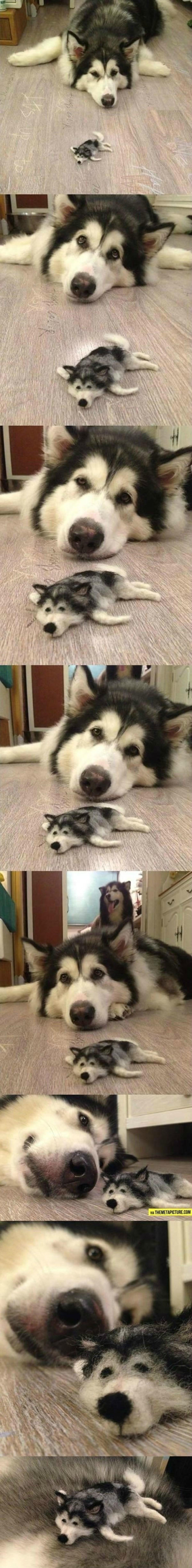 "Little doggo made from doggo hair. .. ""Don't pet me or my son ever again"" Little doggo made from hair ""Don't pet me or my son ever again"""