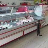 joshlol goes to the butchers