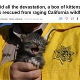California, yes.