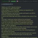 Bernie's America